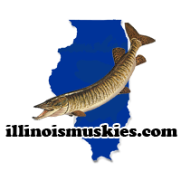 Illinois musky