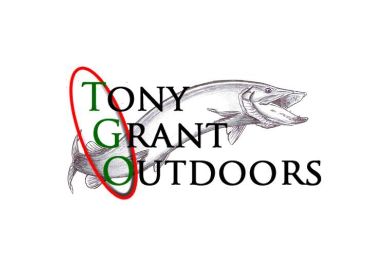 new tgo logo